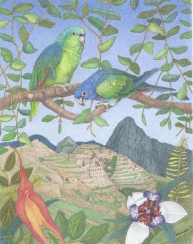 Remembering Machu Picchu