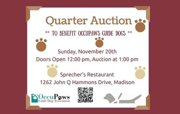 Quarter Auction Mania