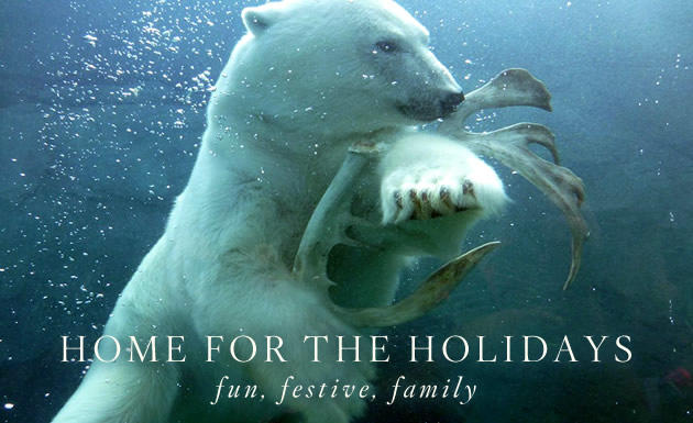 Home for the Holidays: Family fun package