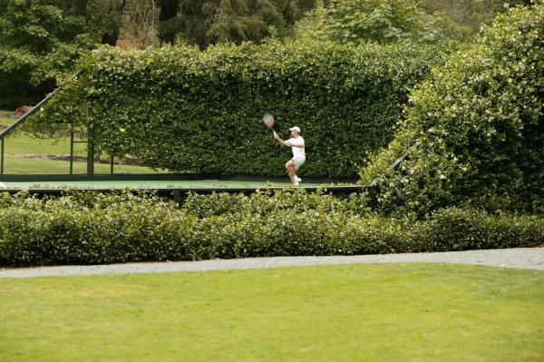 Meadowood Tennis