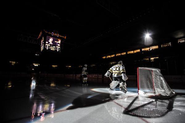 Bruins Goalie
