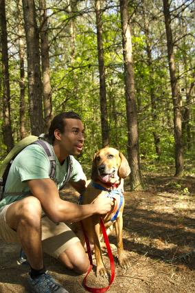 Roanoke Hiking Dogs