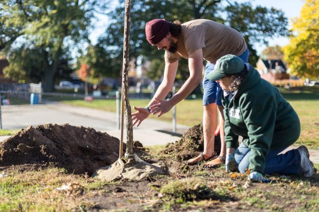 Planting New Growth Urban Forest Project