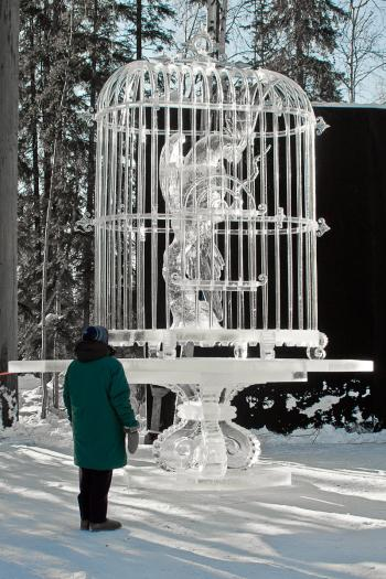 Let it Be Ice Art Birdcage