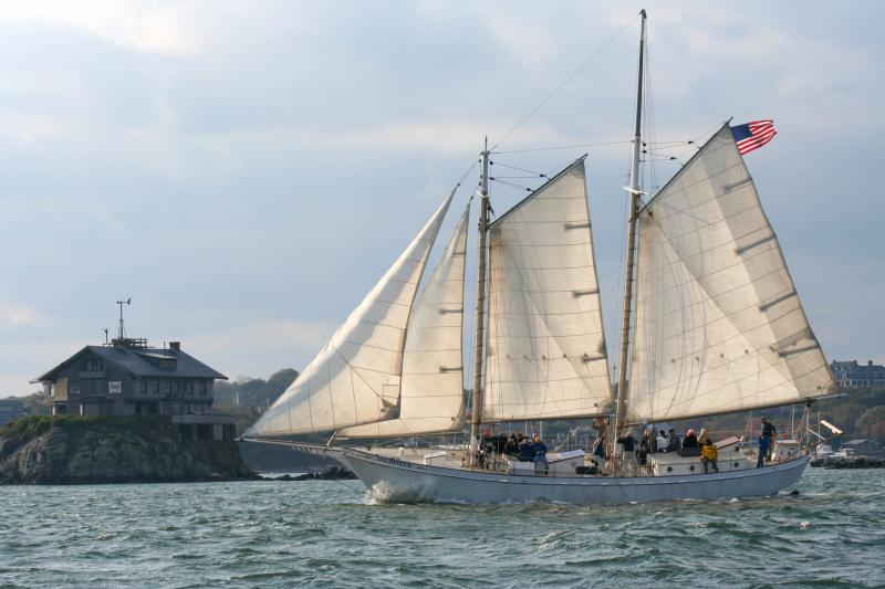 Harbor Sail