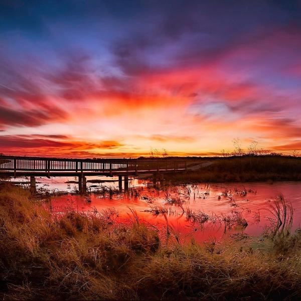 Baker Wetlands
