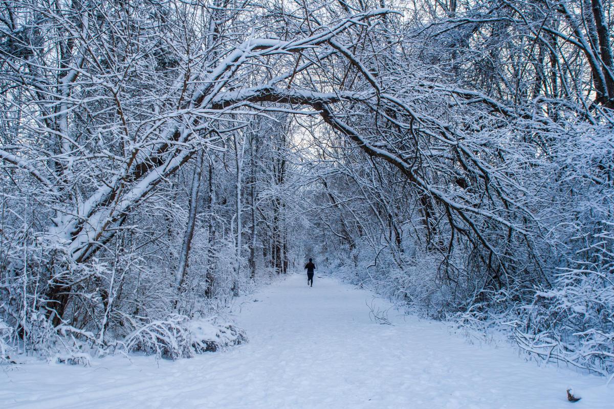 Rail Trail Winter