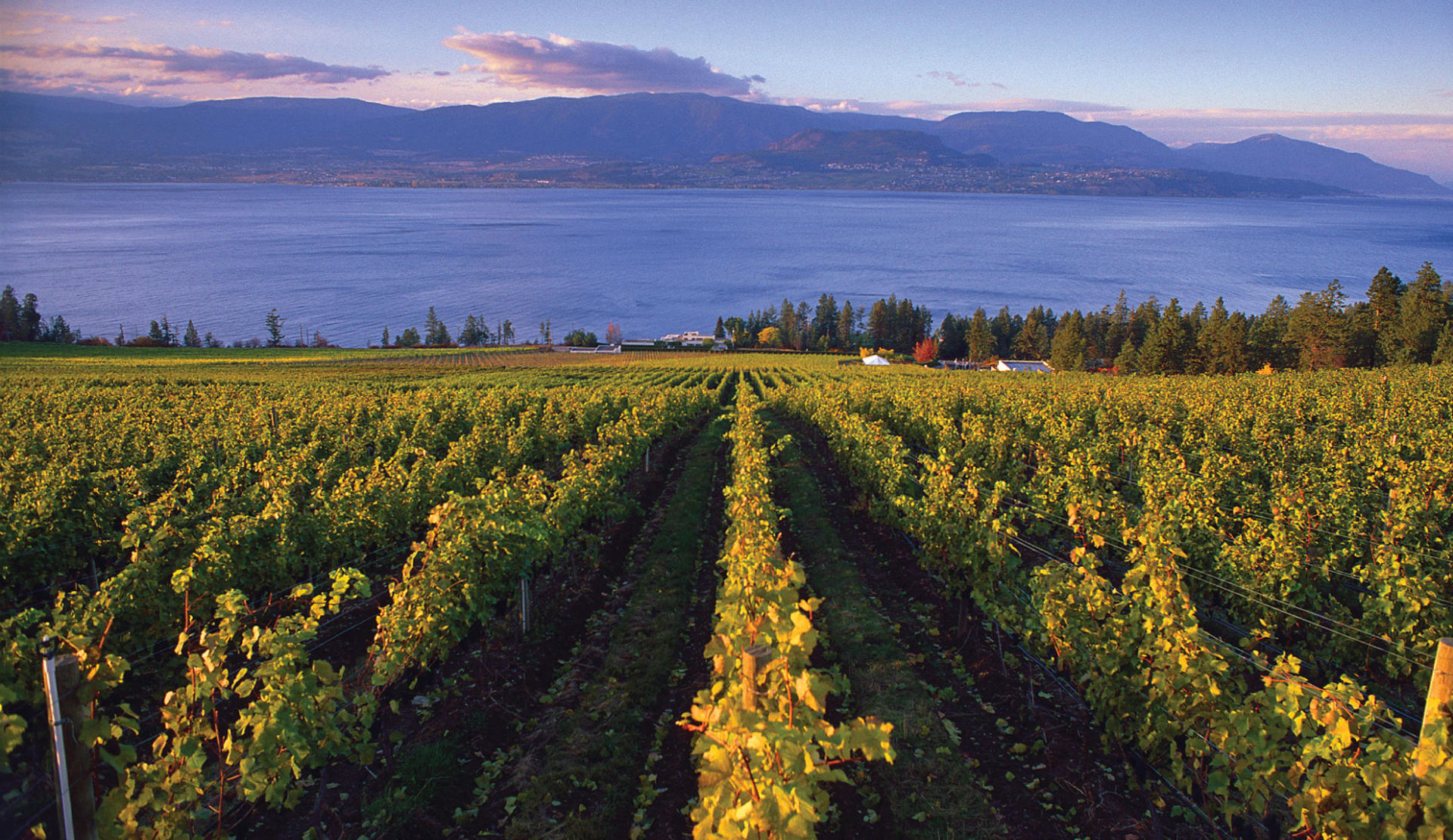 British Columbia Wine Country Tourism Vancouver