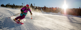Ski Area Hero