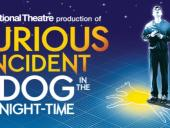 THE CURIOUS INCIDENT OF THE DOG IN THE NIGHT-TIME in Rochester, NY