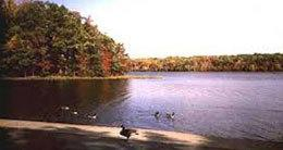 Outdoor Attractions in Burke, Clifton and Lorton