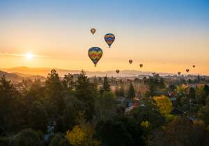 Hot Air Balloons in the Napa Valley
