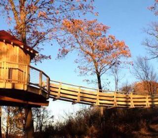 Summit Inn Treehouse