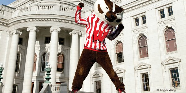 Bucky in front of Capitol