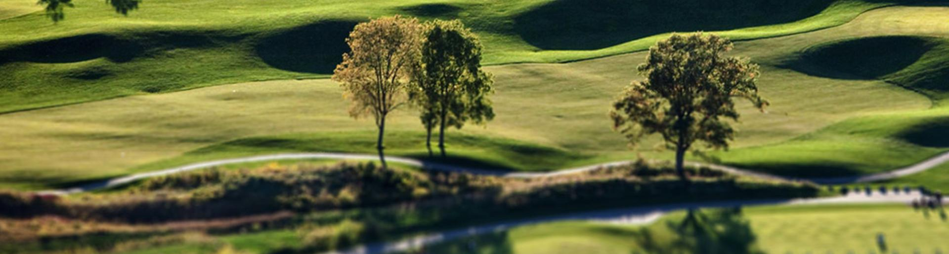 PGA Tour 2016 Golf Course
