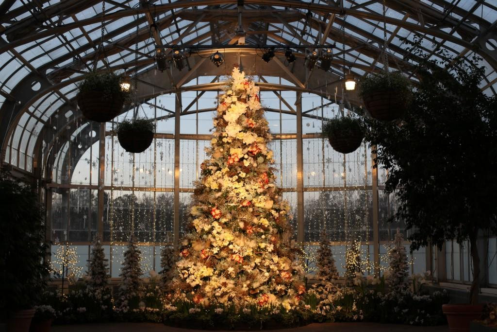 lewis ginter christmas tree