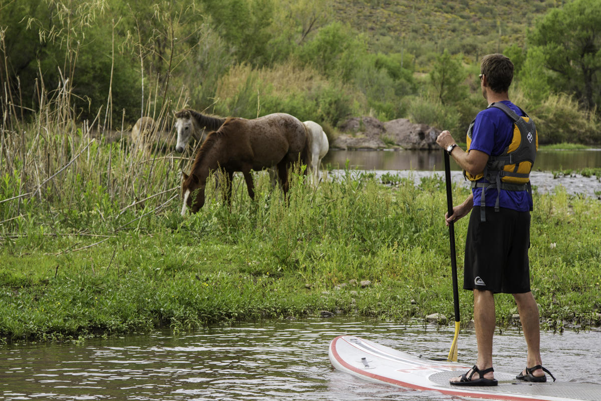 Paddling the Salt River | VisitPhoenix.com Things to do ...