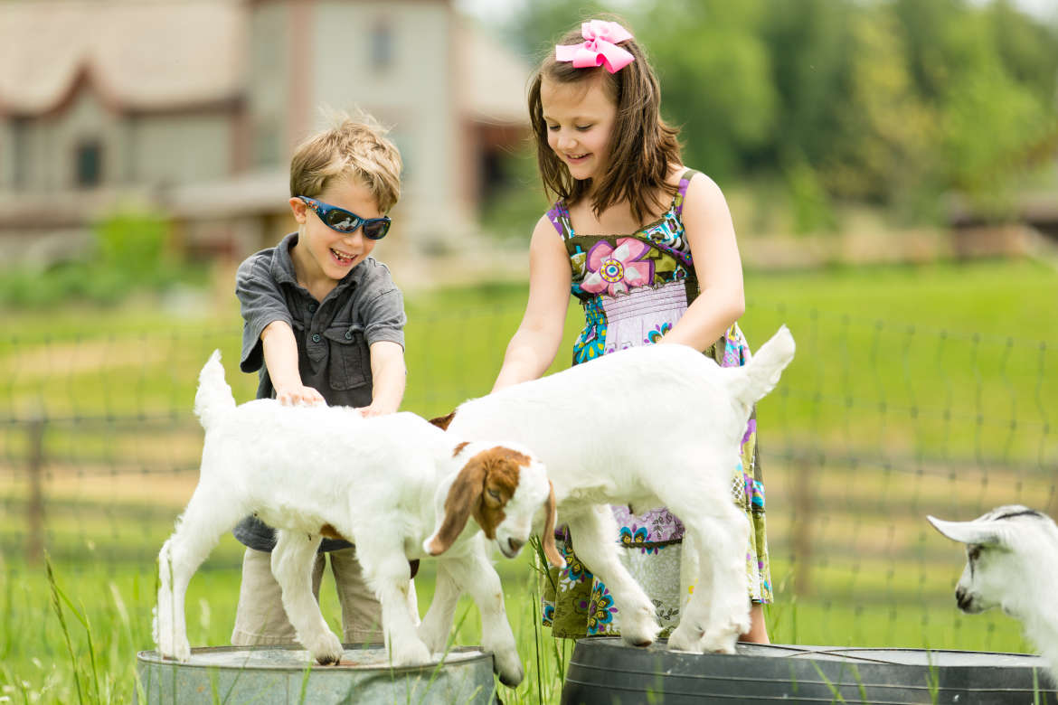 Children with Goats