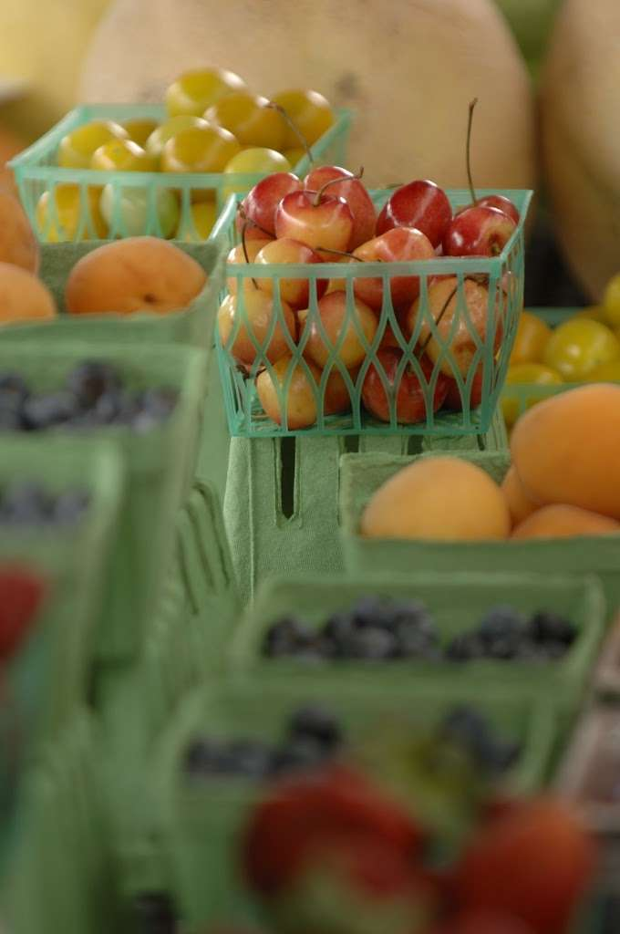 Local Agricultural Program Wins State Grant