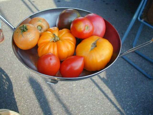 Feast on Downtown Tomato Walk