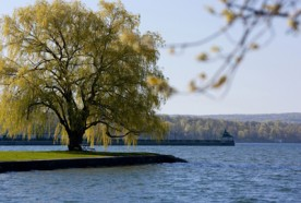 Owasco Lake - Emerson Park