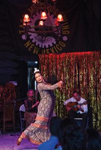 41 Flamenco
