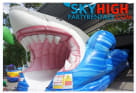 Shark Party Water slide