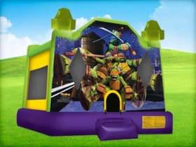 Ninja Turtles TMNT 13
