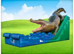 King Croc Wet/Dry Slide