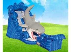 Gone Fish'n Shark Wet/Dry Slide