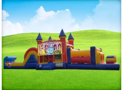 Princess Inflatable Combo Rental