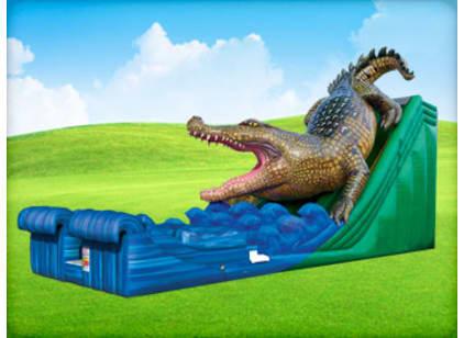 Alligator Bounce House Rental