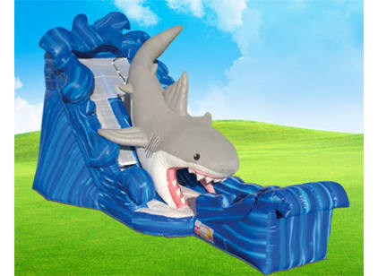 Rent Jaws Shark Inflatable Water Slide