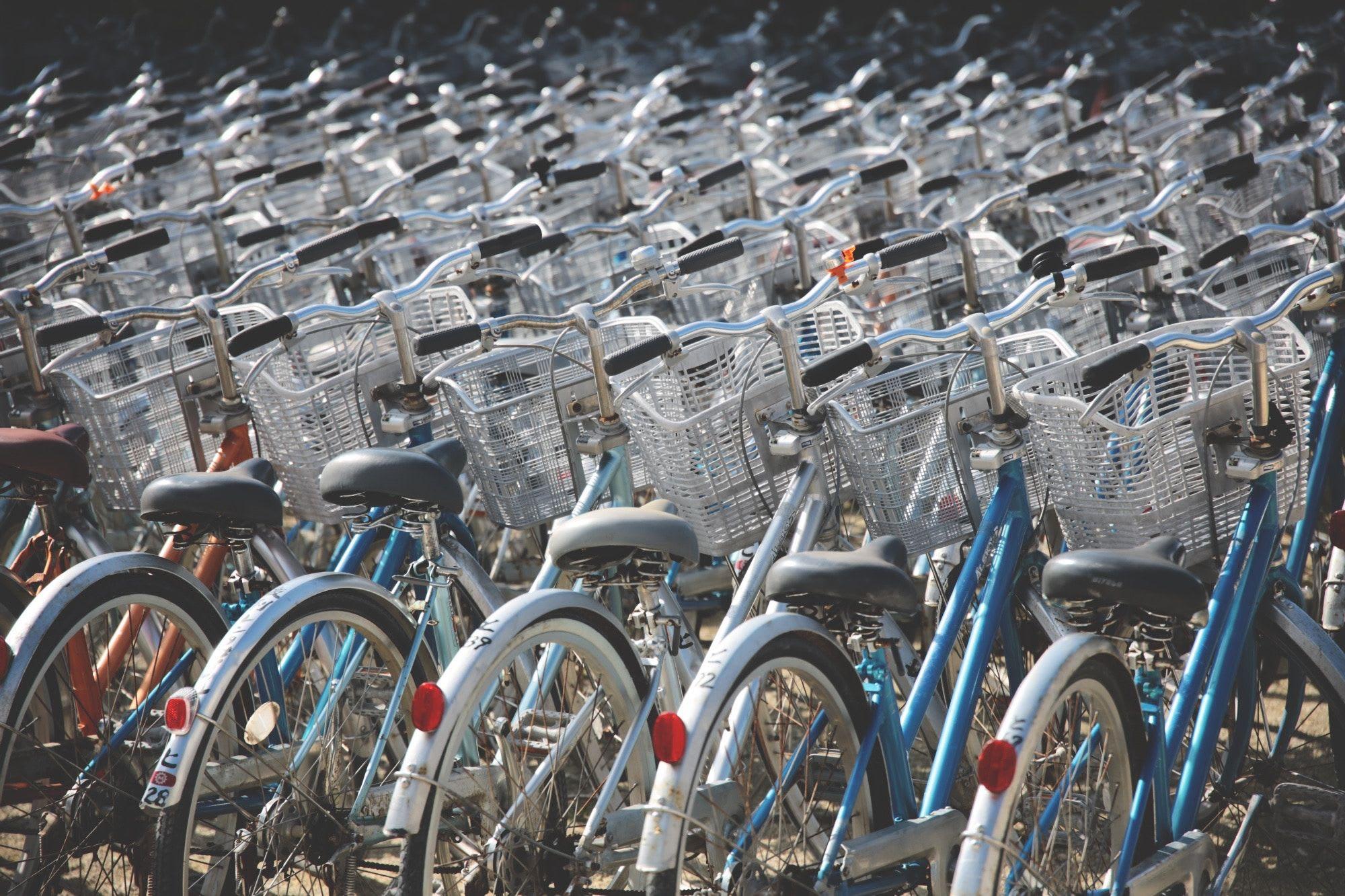 Piste de biciclete în Pitești