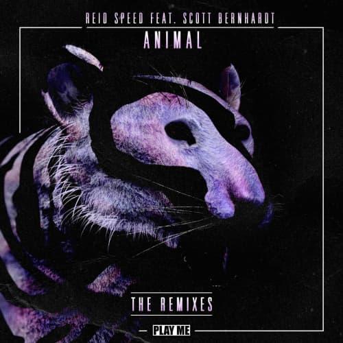 Animal ft. Scott Bernhardt (A Boy A Girl Remix)