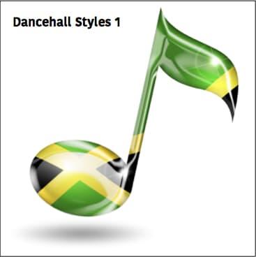 Dancehall Vybe 13 (mr Skank)