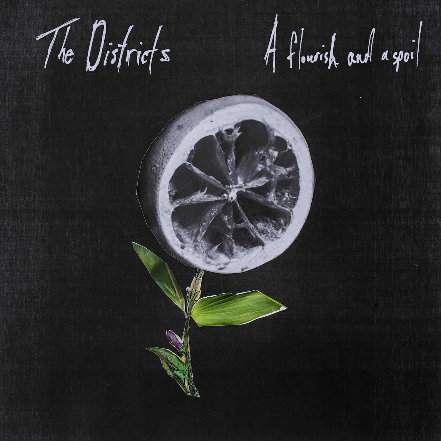 "The Districts Release Long Awaited Album ""A Flourish and a Spoil"""
