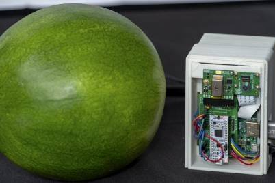 Watermelon maturity device2 qgo87k 1024x538