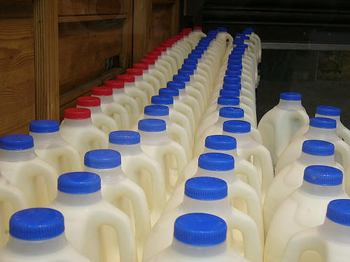 Despite climate change impacts, other factors are more critical to dairy farm profitability, including milk prices. Picture: mojitopt/Flickr