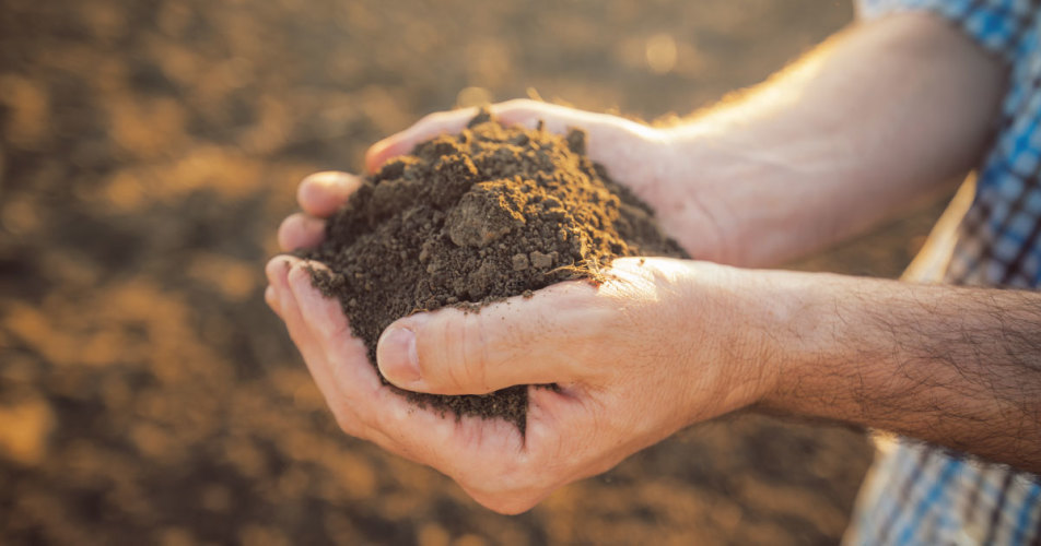 Sustainable cellulosic biofuels: A soils-centric perspective
