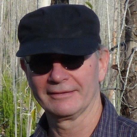 John Handmer