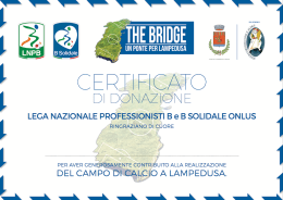 OFFICIAL CERTIFICATE OF CONTRIBUTION