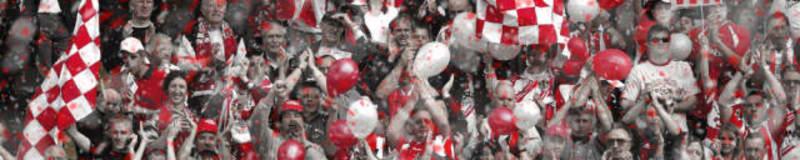Stevenage fans