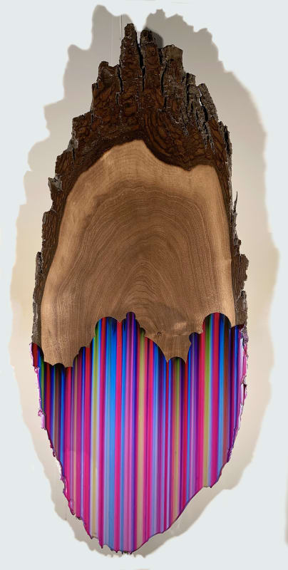 Oak 6, ballpoint pen and resin on oak slab