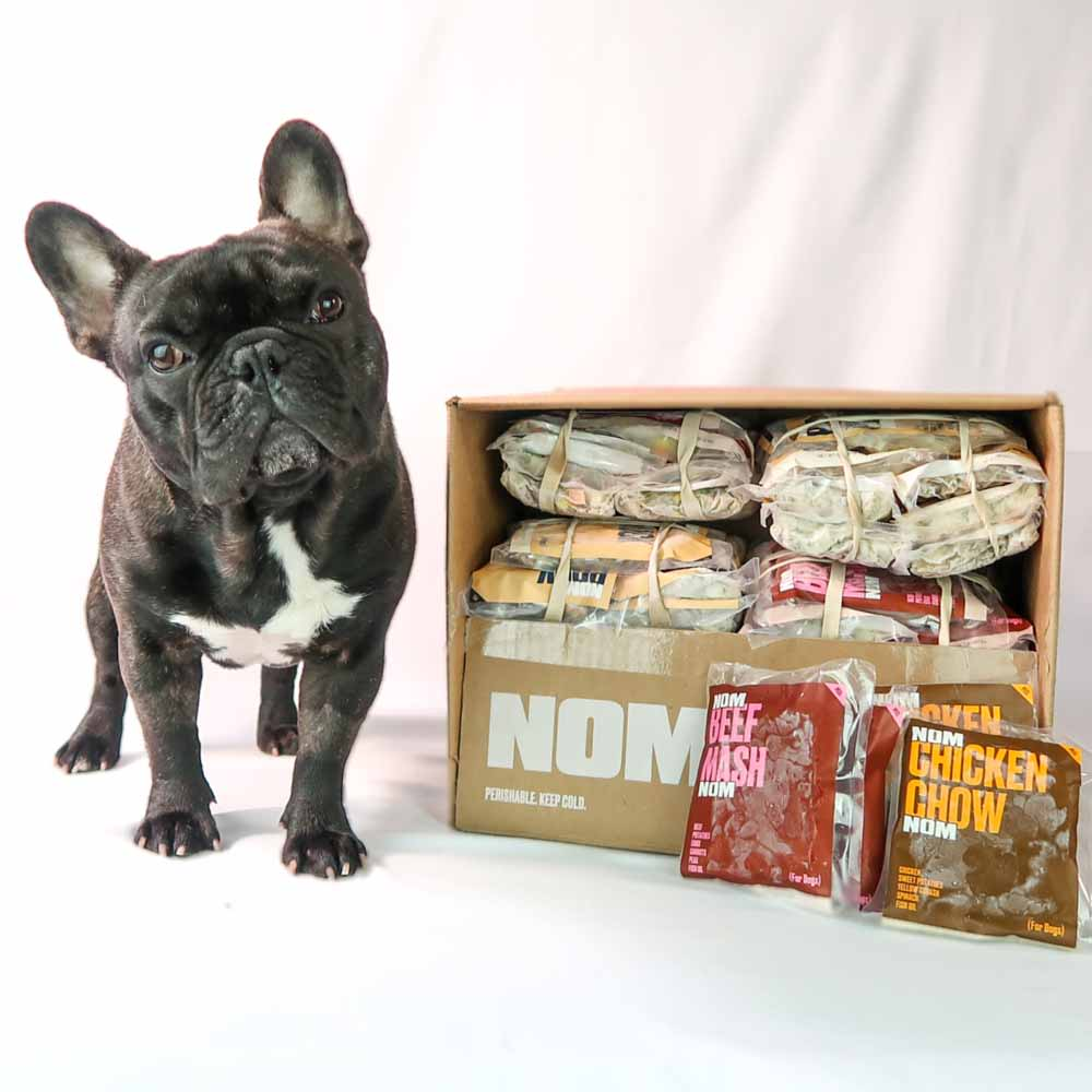 What Worries You About Fresh Food Delivery For Your Dog?