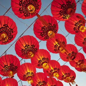 Lunar New Year Community Day Celebration