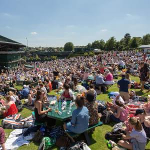 Wimbledon Finals Live