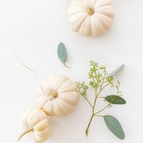 Craft & Sip: Pumpkin Centerpieces