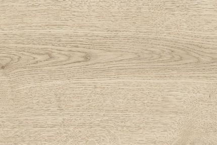 Harold Light Almond Oak Laminate Flooring 8mm By 193mm By 1380mm