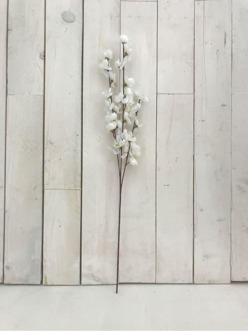 Ramo fiori di ciliegio bianchi